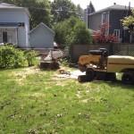 Essouchement et abattage d'arbre ville de Québec - Arboritek M.A. Inc à Québec