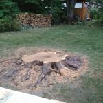 Enlever une souche d'arbre à Québec - Arboritek M.A. Inc à Québec
